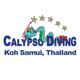 Calypso Diving Koh Samui